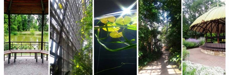 Berlino_Botanischer Garten sequenza